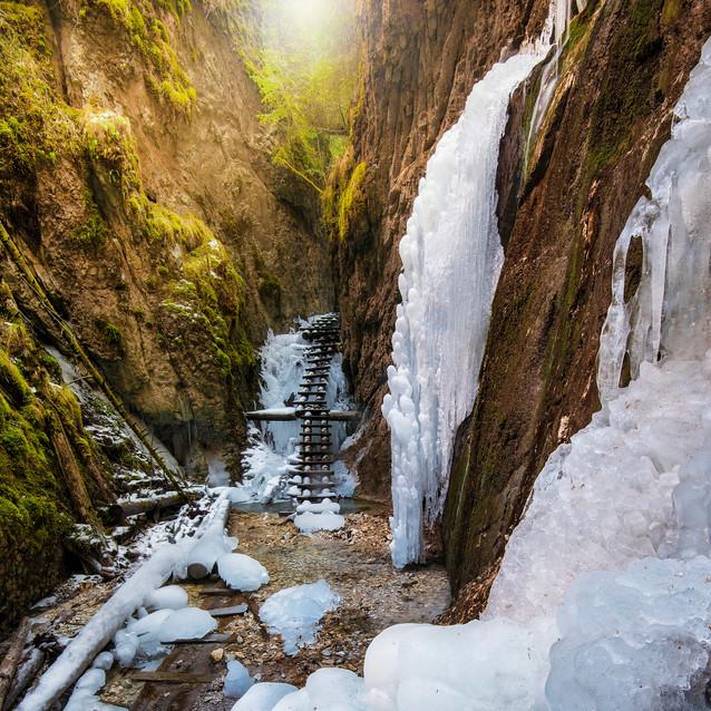 Zamrznutý raj