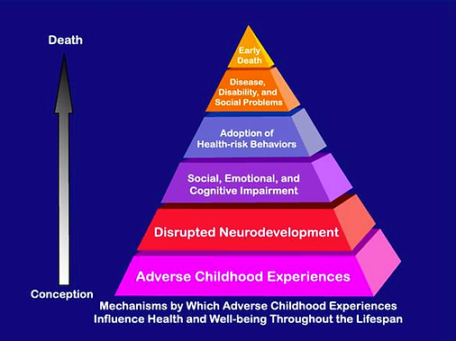 Pyramid illustrating the adverse effects of ACEs