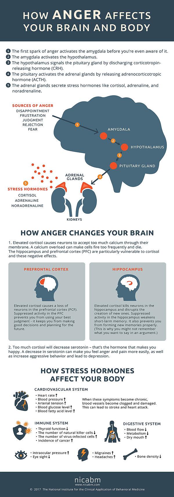 NICABM-Anger-Infographic1.jpg
