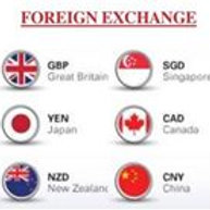 60 minute Psychotherapy Session paid w/Foreign Currency to be converted