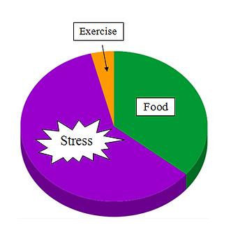 Pie chart2.PNG