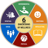 Dimensions of Wellness chart