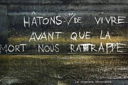 Ratatouille17