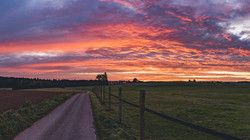 Oberschwaben-Sunrise