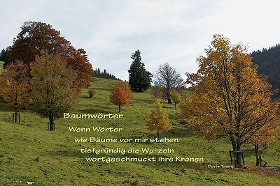 PK_Baumwoerter.jpg