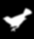 puce-oiseau-simier-fleurs