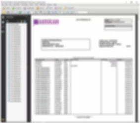 Screenshot of invoices with stmts.jpg