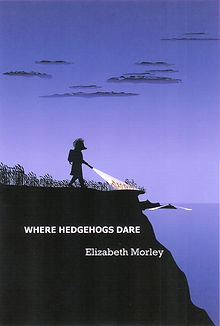 It is a cliff top scene at night. A hedgehog shines her torch ahead of her as she walks across a wheat field towards a cliff edge. In the background search lights scan the sea.