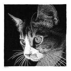 Balou the Cat