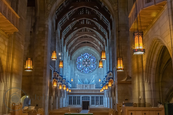 Inside St. Johns Cathedral | 10x15