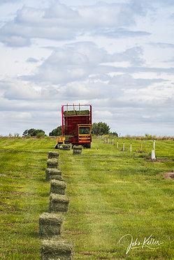 Hay Harvesting | 16x24