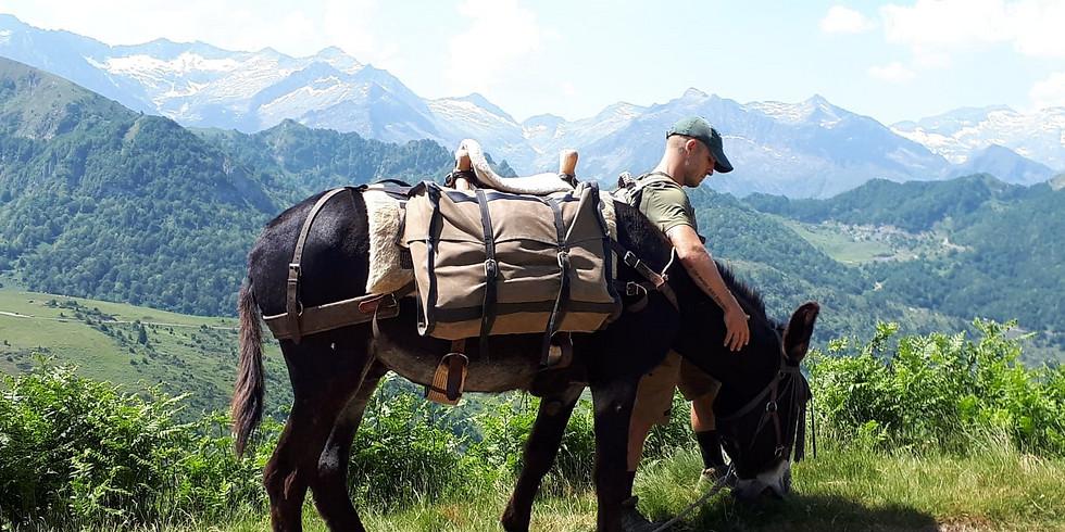 C4 Rando d'Ane dans les Pyrénées Ariègeoises