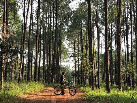 C4 Kirirom mountain bike