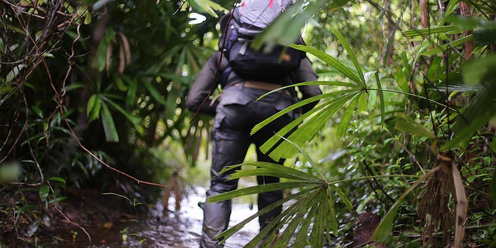 C4 Kirirom Forest RECON (2 days)