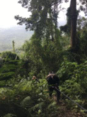 Aural Mountain