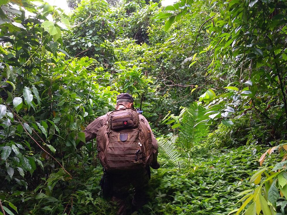 Jungle RECON 02