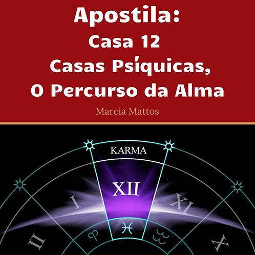 Apostila Casa 12 - Casas psíquicas, o percurso da alma