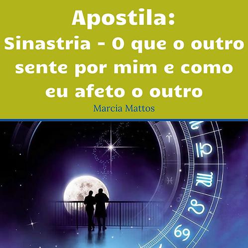Apostila Sinastria - O que o outro sente por mim e como eu afeto o outro