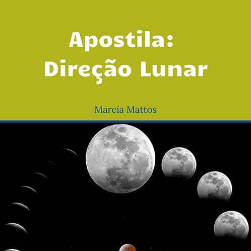 Apostila Direção Lunar