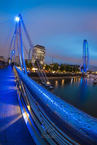 Golden Jubilee in blue
