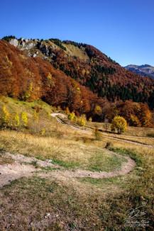 Hiking trail in Biograd