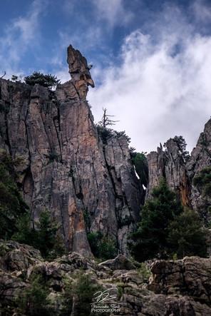 The head - Gorges de la Restonica I