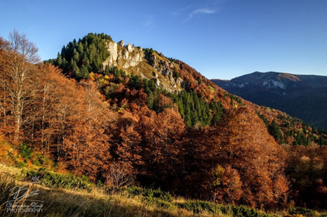 Biograd landscape