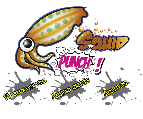 squid punch logo.png