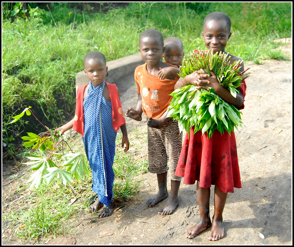 I've got this photo somewhere else on the webpage but this it was taken along the muddy track here described. the girl is collecting cassava leaves for a sauce for their dinner.