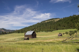 Old Mountain Ranch