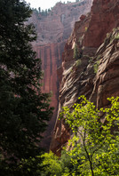 Zion, bottom to top