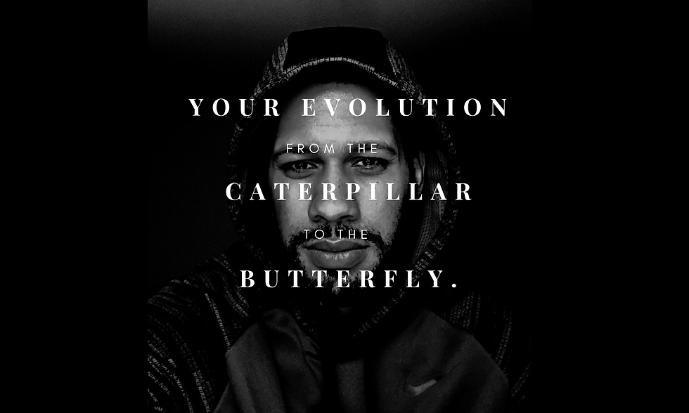 Your Evolution to Butterfly.png
