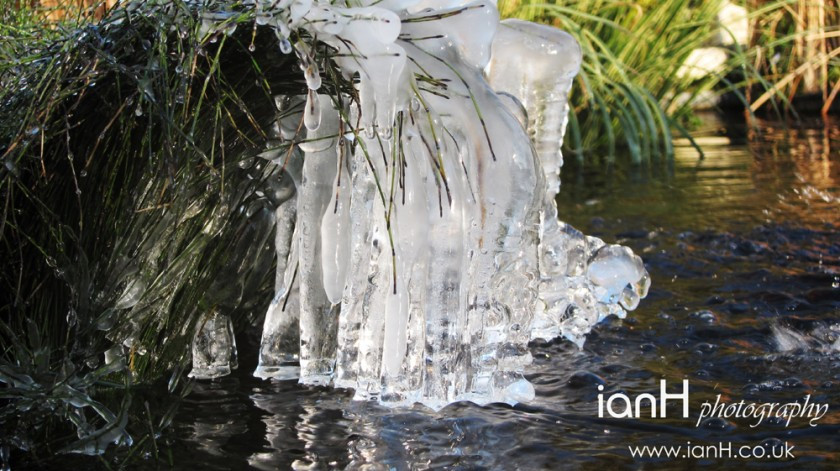 icicles cascading into water