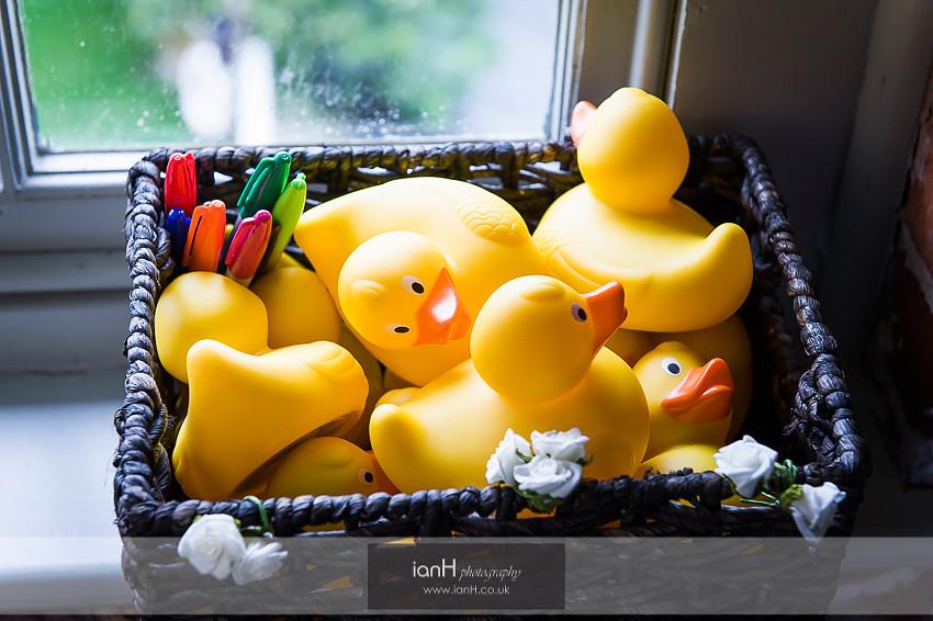 Ducks at Sopley Mill