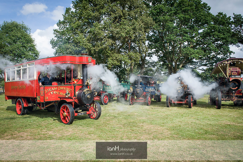 New Forest steam engines
