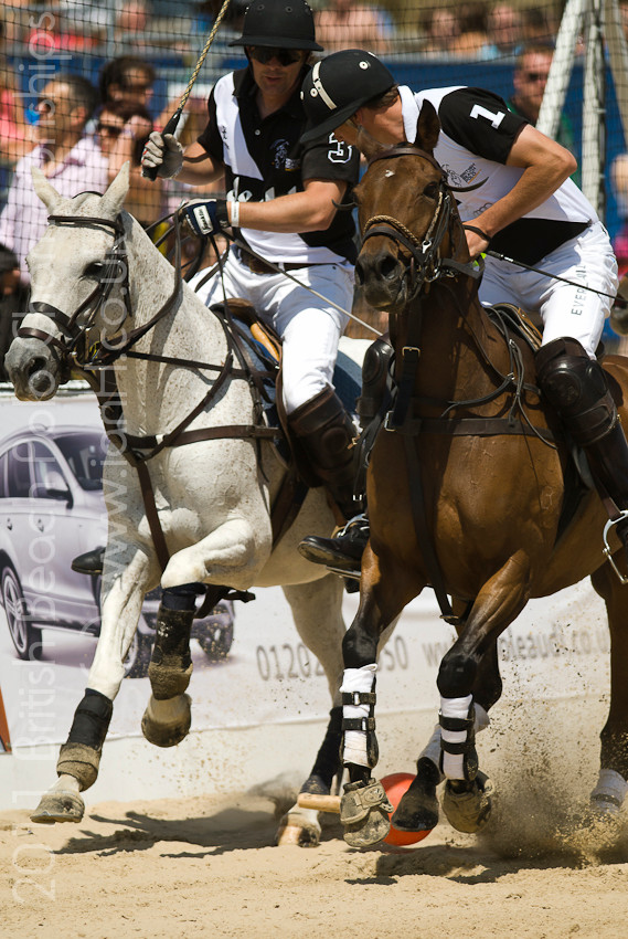 British_Beach_Polo_Sandbanks_horses