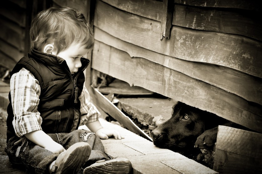 Dorset portrait and children's photographer