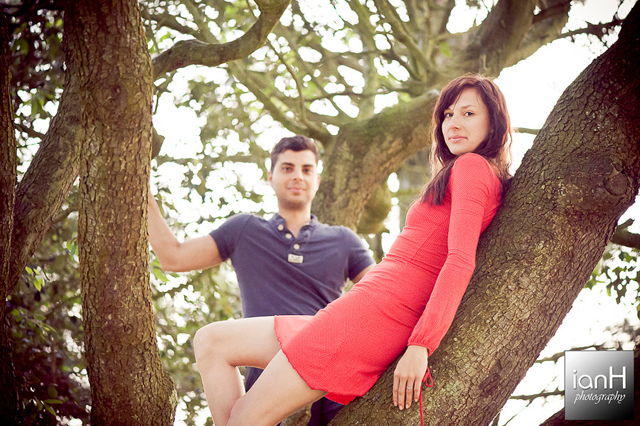 bournemouth-beach-engagement-shoot-in-a-tree