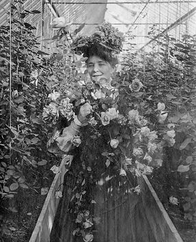 mary-in-greenhouse.jpg