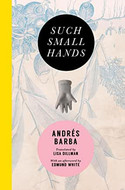 Such Small Hands by Andrés Barba