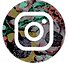 LG-Insta-Icon.png