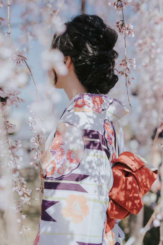 Pre Wedding Photography: Bride in Kimono back facing camera surrounded by cherry blossoms