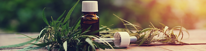 Cannabinoid Quantitation via Rugged and Adaptable HPLC/UHPLC Method Development