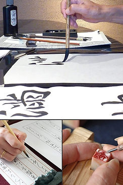 kawasemi_image.jpg