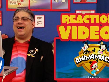 Animaniacs Reboot is a GOOD Idea (Not a Bad Idea!)