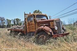 TruckinField900px.jpg