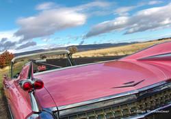 Pink Cadillac900px.jpg