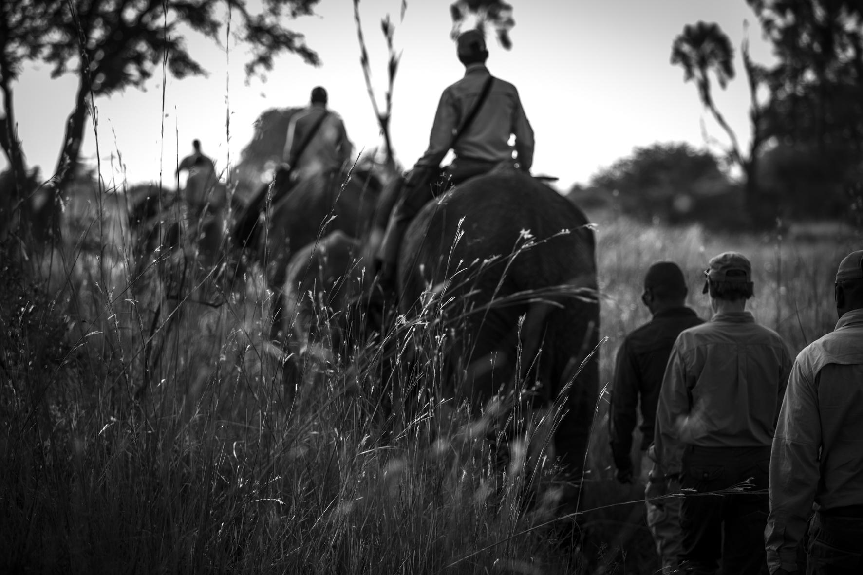 AbuCamp-Botswana-CrookesAndJackson-7356