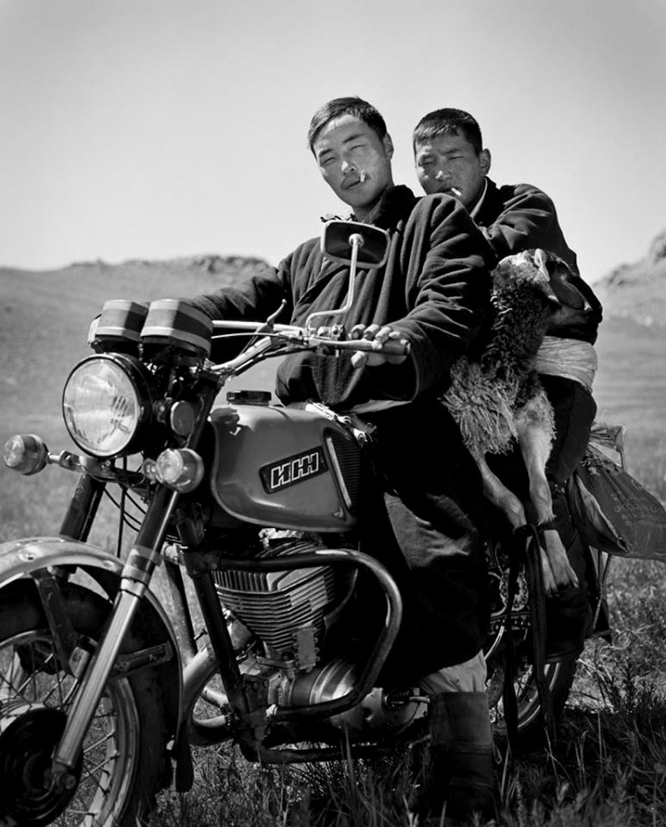 Two Men and Sheep | Bike | Tibet
