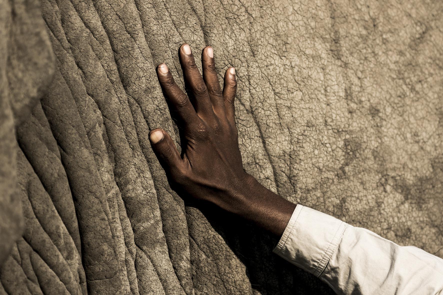 AbuCamp-Botswana-CrookesAndJackson-5402